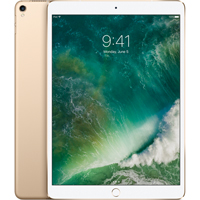 iPad Pro 10.5 Inch Wifi Only 256Gb - Gold