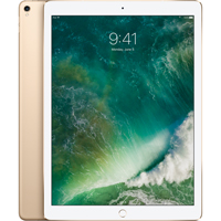 iPad Pro 12.9 Inch Wifi Only 256Gb - Gold